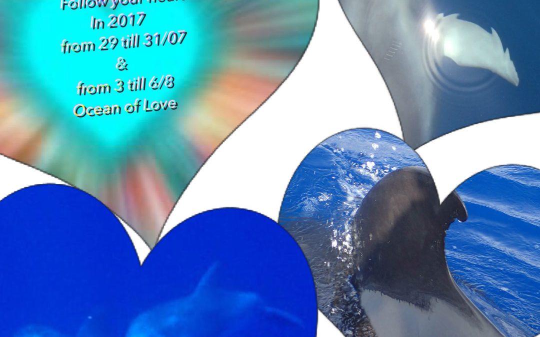 Dolfijn en Walvis Liefde
