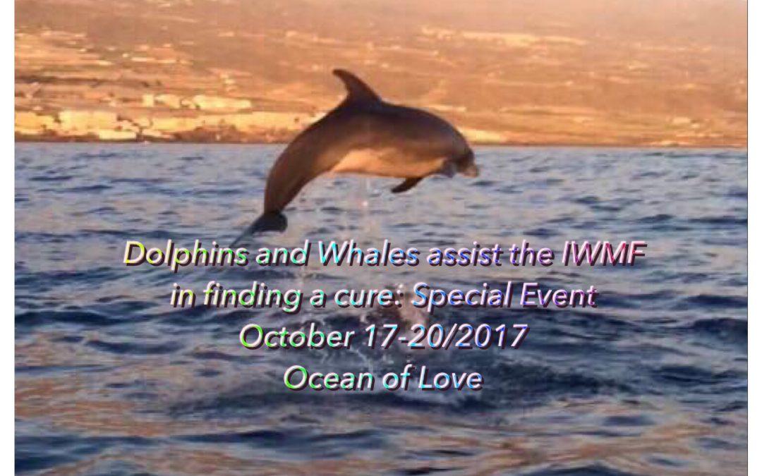Dolfijnen& walvissen helpen om genezing te vinden…